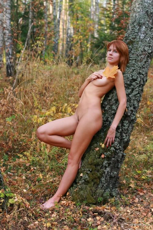 Летние деньки (в лесу)