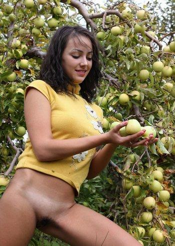 Яблочек кто хочет?